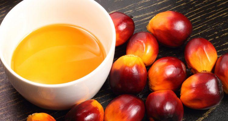 L'olio di palma è davvero cancerogeno?